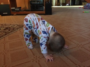 Baby Downward Dog!